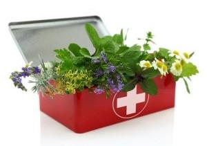 Emergency Herbs